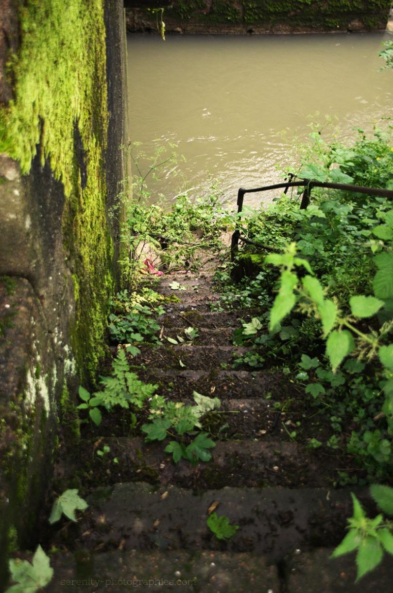 escalier lawe copie